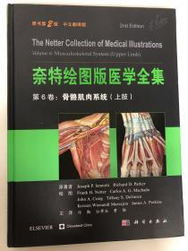 奈特绘图版医学全集 第6卷:骨骼肌肉系统(上肢)