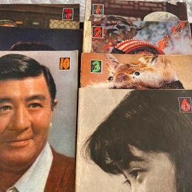 大众电影(1979年1、2、3、6、7、8、10期)合售