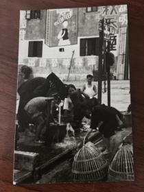 民国时期香港新界地区大埔崇德街老照片一张