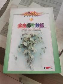 家庭美叶种植——美一美生活丛书