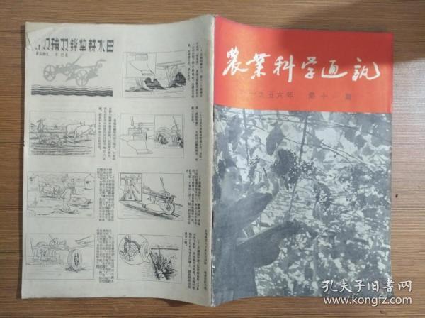 农业科学通讯1956年第11期