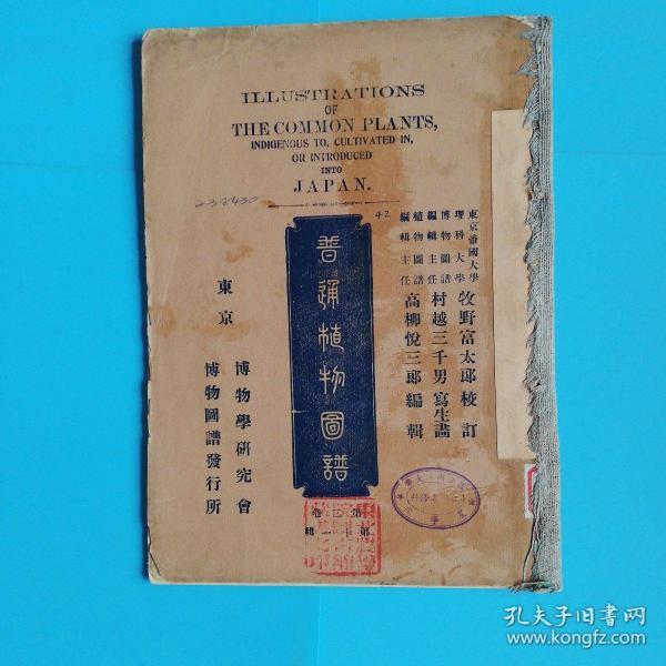 普通植物图谱 套色石印 第二卷 第十一辑 !明治41年 光绪1908年 初版印刷 彩色石印本(1904年彩色石印传入中国)