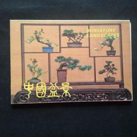 中国盆景(10张)