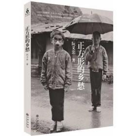 14年版 】【正方形的乡愁】  图书 阮义忠 封面