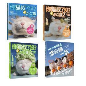 你猫叔了没?1-4【共4册】 顶物猫一族 【都市减压神兽】萌 (日)白猫 著
