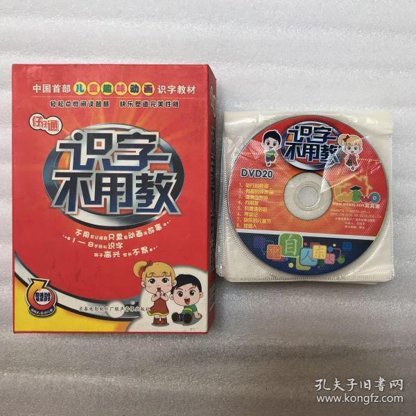 仔仔通:识字不用教(适用1-8岁儿童,趣味动画快乐识字,共20碟DVD)