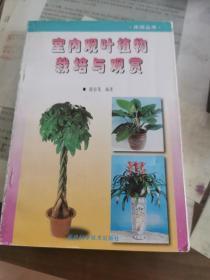 室内观叶植物栽培与观赏