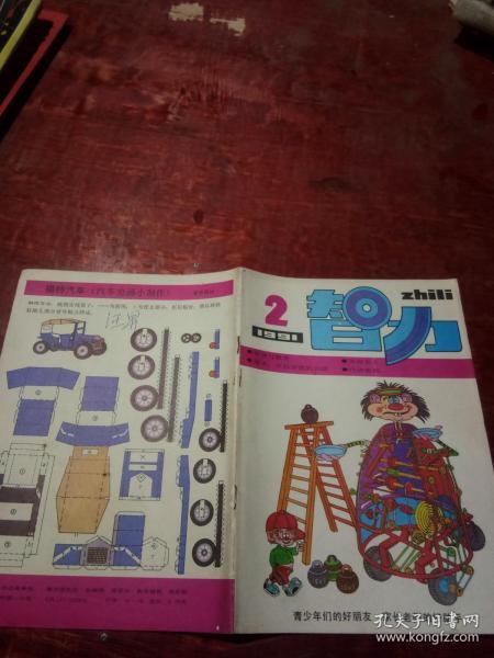 智力1991年第2期