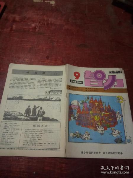 智力1991年第9期