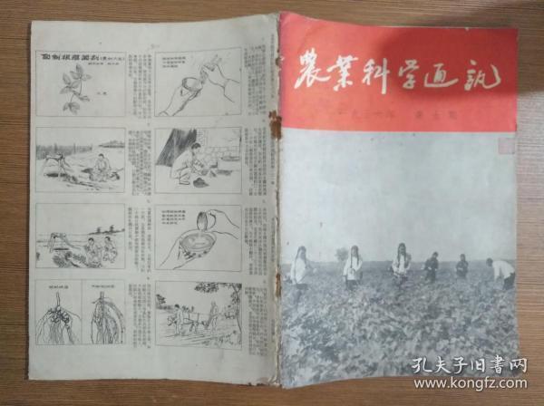 农业科学通讯1956年第5期