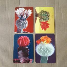 1975年《花卉》年历卡一组四枚