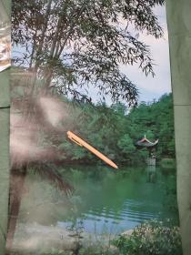 竹子园林水塘凉亭摄影图画