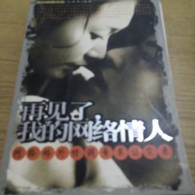 《再见了,我的网络情人:网络婚外情调查采访纪实》dlq2