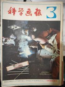 《科学画报 1981 3》用眼睛控制机器 教授级电子计算机、世界贮存与商品价格、世界上有哪些四季如春的地方?、家庭里的实验 物理世界的万花筒......