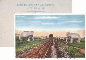 民国时期北京明朝十三陵彩色明信片