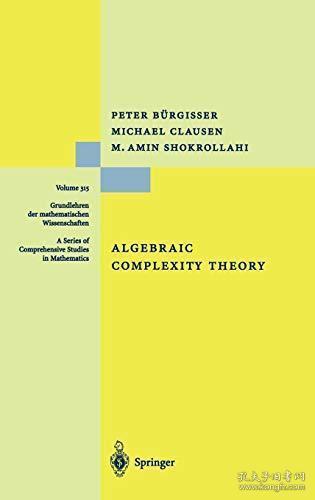 Algebraic Complexity Theory (Grundlehren der mathematischen Wissenschaften) (Volume 315)