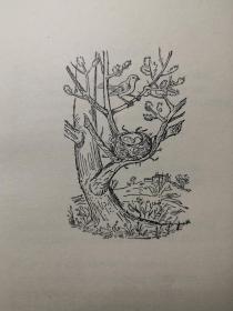 COLLECTED POEMS    毛边本    瓦尔特·德拉·梅尔   《诗选 》  插图版