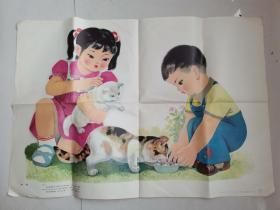 小学看图作文补充教学图片:喂猫