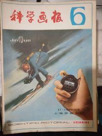 《科学画报 1981 6》市场竞争的秘诀、怎样观看现代足球比赛、为什么中医常常观察小儿的指纹?、合理戴用太阳眼镜、探测海底地层的新仪器.......