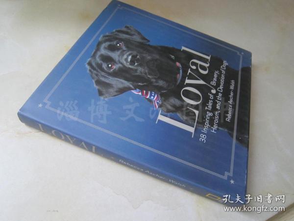 Loyal:38 Inspiring Tales of Bravery, Heroism, and the Devotion of Dogs【24开精装 英文原版】(忠诚:38个关于勇敢、英雄主义和狗的忠诚的鼓舞人心的故事)