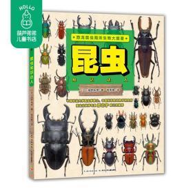 恐龙昆虫海洋生物大搜查 昆虫 知识达人 和昆虫学博士一起玩生物大搜查游戏,成为昆虫知识达人 海豚