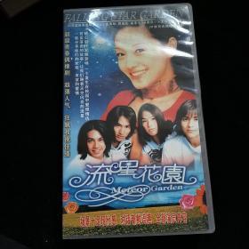 流星花园VCD-20碟装