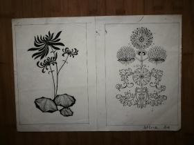 ●八十年代原始画稿:装饰图案《白描——植物》佚名【尺寸41X29公分】!
