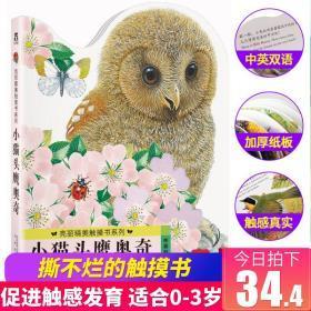 小猫头鹰奥奇 亮丽精美触摸书系列 乐乐趣宝宝触摸类绘本 0-1-2-3