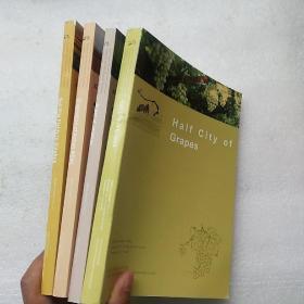 Search for the Peach Garden:4本合售【英文版 内页干净】现货