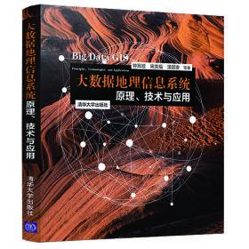 【非二手 按此标题为准】大数据地理信息系统:原理、技术与应用