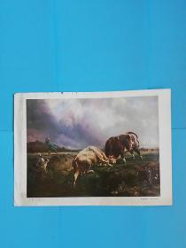 角牛---布拉斯.卡萨(1804--1867)