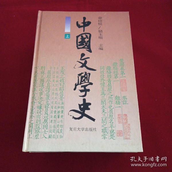 中国文学史(上中下)