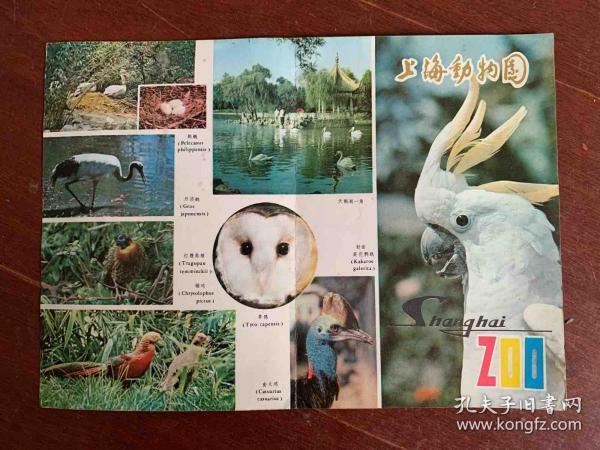 上海动物园 导游图