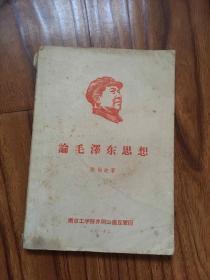 论毛泽东思想