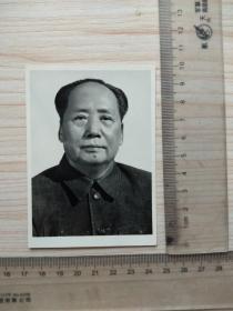 老照片,毛泽东,标准照,,尺寸图为准