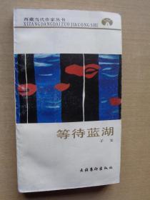 西藏当代作家丛书:等待蓝湖