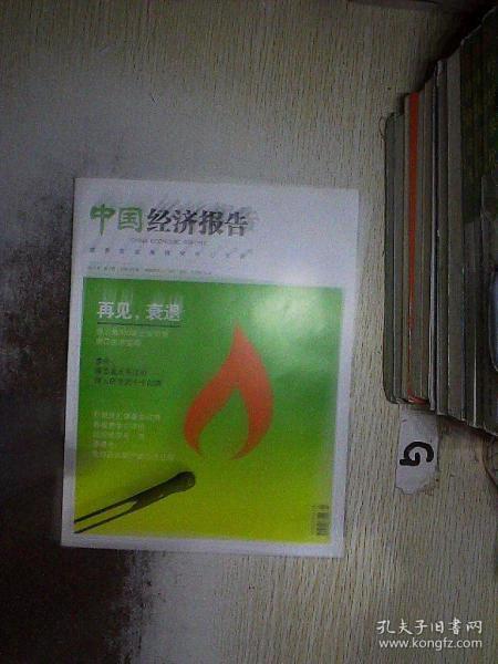 中国经济报告 2013 5