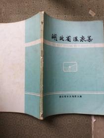 湖北省温泉集