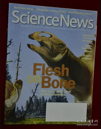 新科学杂志 Science News 2010/01/30 科学新闻 外文杂志