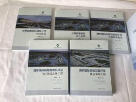 浦东国际机场港湾机坪及飞行区综合体工程