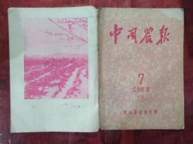 中国农报1958年第7期