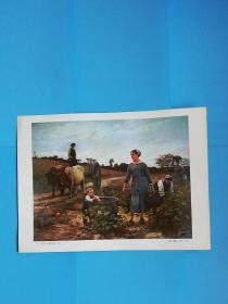 朗格多克葡萄园的一角---德巴.蓬桑(1847--1913)