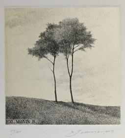日本 Shigeki Tomura 版画藏书票原作1精品收藏尺寸(14.5*19cm)