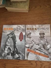 黑色魔鬼:美加联合第1特勤队二战实录1942-1945(上下)