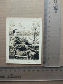 老照片,毛主席坐藤椅,尺寸图为准
