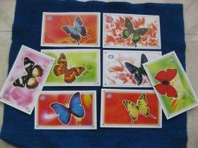 明信片:蝴蝶  8张(山西)