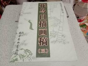 花鸟白描画稿(三)