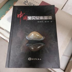 中国宝贝总科图鉴