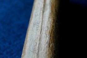 几千年的老象骨带刻字甲骨骨化石残件