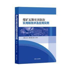 煤矿瓦斯灾害防治实用新技术及应用实例